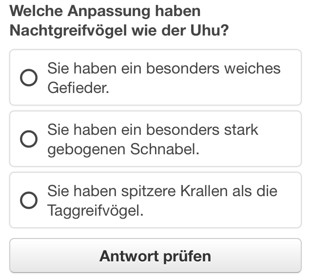 Multiple-Choice-Fragen